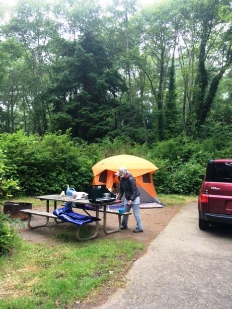 campsites 2